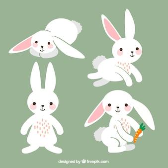 Variedad de conejos de pascua lindos
