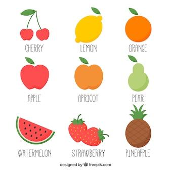 Variedad de frutas dibujadas a mano