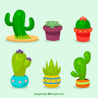 Variedad divertida de cactus con diseño plano