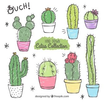 Variedad divertida de cactus a mano