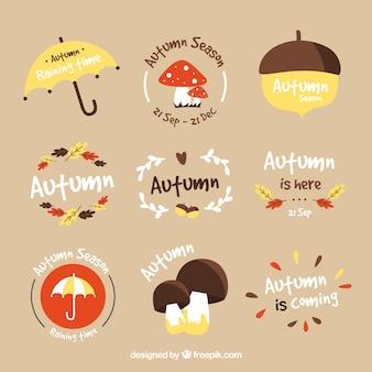Variedad divertida de etiquetas de otoño a mano