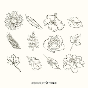 Variedad de flores y hojas.