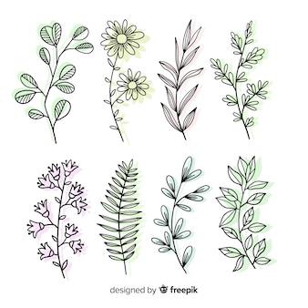 Variedad de hojas tropicales y silvestres.