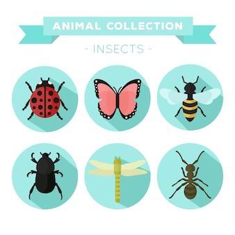 Variedad de insectos en diseño plano
