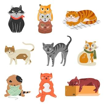 Variedad de razas de gatos con diferentes poses y emociones. colección de adorables gatitos.
