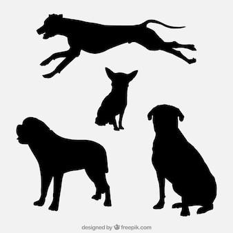 Variedad de siluetas de perros