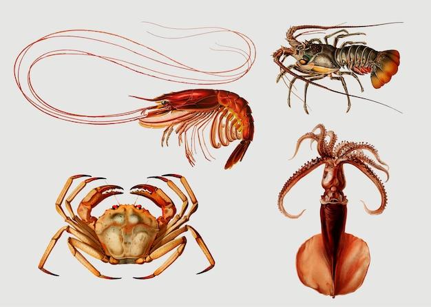 Variedades de mariscos