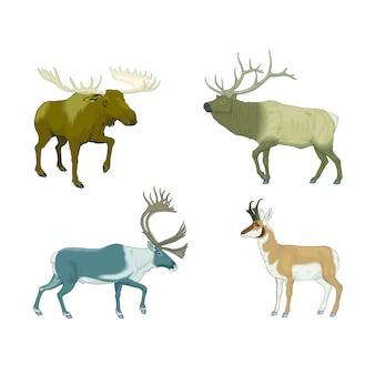 Varios ciervos con cuernos y alces viviendo en la estepa.