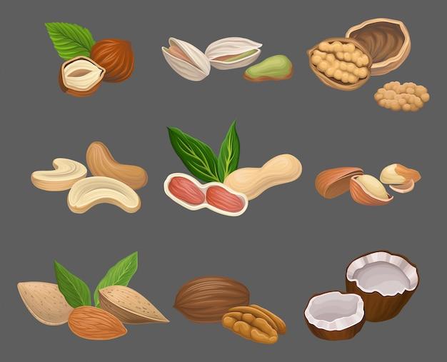 Varios tipos de nueces