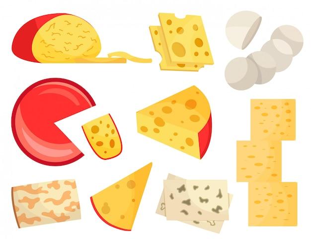 Varios tipos de queso. estilo plano moderno realista