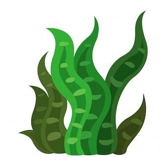 Vector de algas
