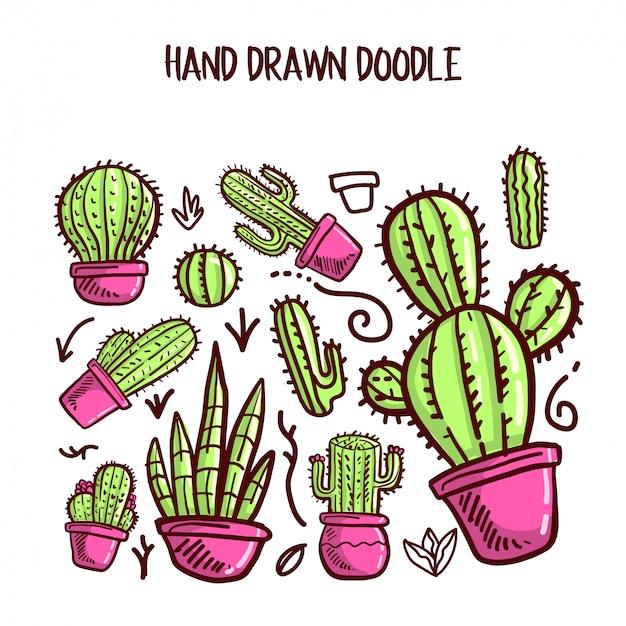 Vector de cactus y conjunto suculento.