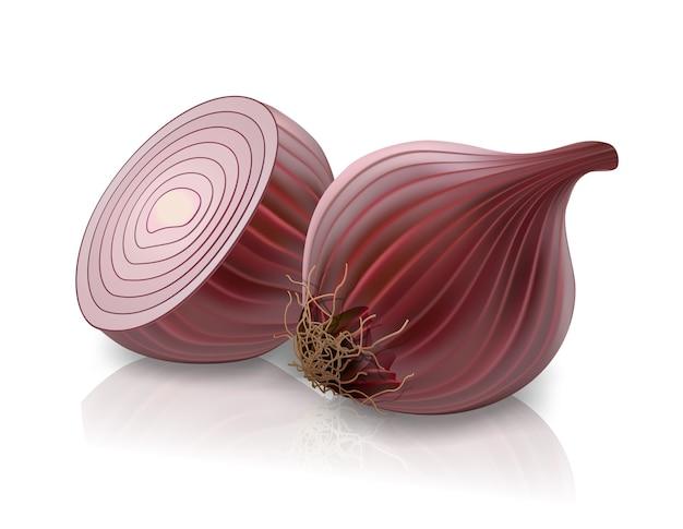 Vector cebolla roja aislado sobre fondo blanco.