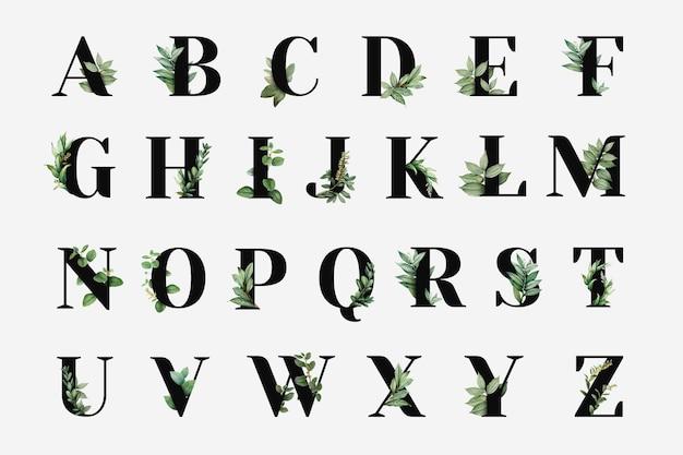 Vector de colección de alfabeto de capital botánico
