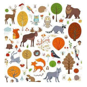 Vector conjunto de árboles del bosque otoñal adorable colección de invitaciones y carteles de libros para niños