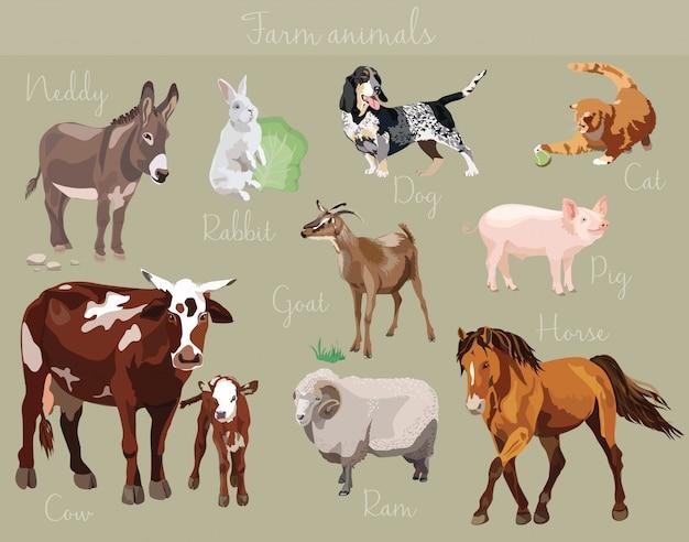 Vector conjunto de diferentes animales de granja