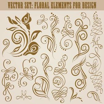 Vector conjunto de elementos florales