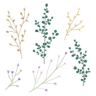 Vector conjunto flores brote