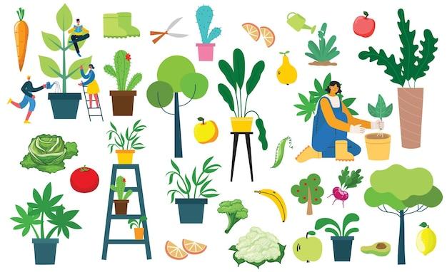 Vector conjunto de gente del pueblo con alimentos orgánicos ecológicos, flores y plantas