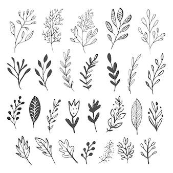 Vector conjunto de ramas y hojas