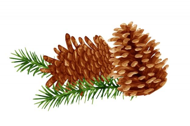 Vector de conos de pino en estilo de pintura de acuarela.