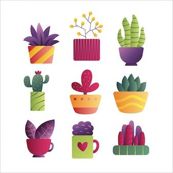 Vector dibujado a mano conjunto aislado de cactus y suculentas.
