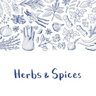 Vector dibujado a mano hierbas y especias de fondo con título