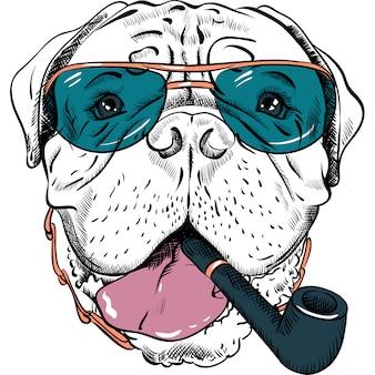 Vector de dibujos animados divertidos hipster perro bullmastiff