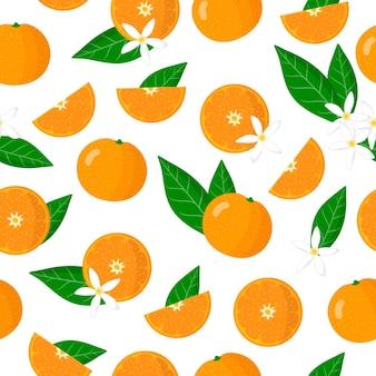 Vector de dibujos animados de patrones sin fisuras con citrus reticulata o mandarina frutas exóticas, flores y hojas