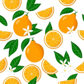 Vector de dibujos animados de patrones sin fisuras con citrus tangelo o honeybells frutas exóticas, flores y hojas