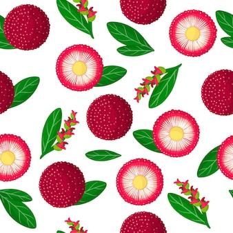 Vector de dibujos animados de patrones sin fisuras con myrica rubra o yangmei frutas exóticas, flores y hojas