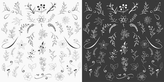 Vector de diseño de elementos florales dibujados a mano