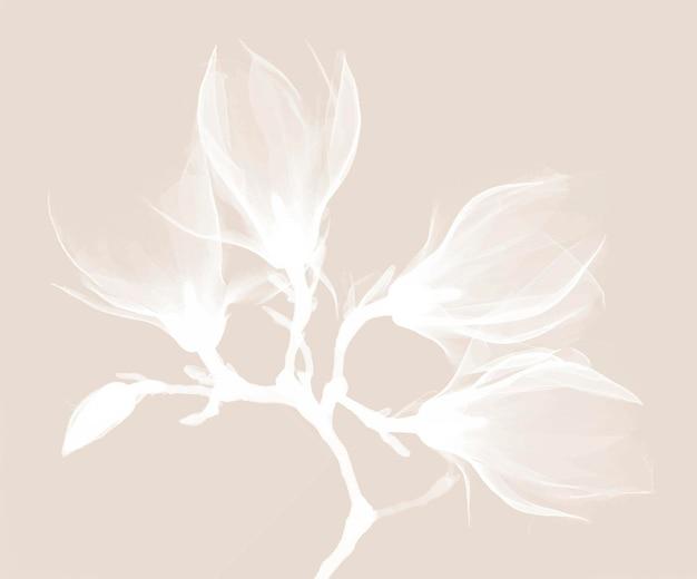 Vector de diseño de rayos x de magnolia, remezcla de ilustraciones originales