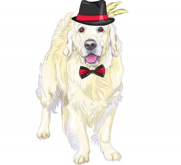 Vector divertido par de perros labrador retriever con sombreros