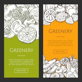 Vector doodle bocetos de frutas y verduras frescas volantes, conjunto de banners. ilustración de colección de banner verde