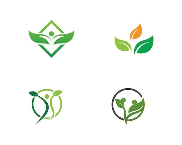 Vector de elemento de naturaleza de hoja verde ecología