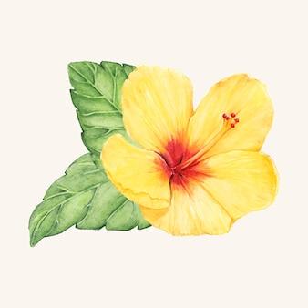 Vector de flor dibujada a mano aislada