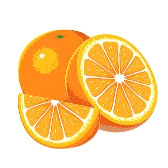 Vector de frutas naranjas