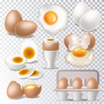 Vector de huevo comida sana clara de huevo o yema en huevera para desayuno conjunto de ilustración