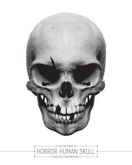 Vector de ilustración de arte de cráneo de horror humano