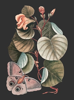 Vector de ilustración vintage de mano tree, remezcla de ilustraciones originales.