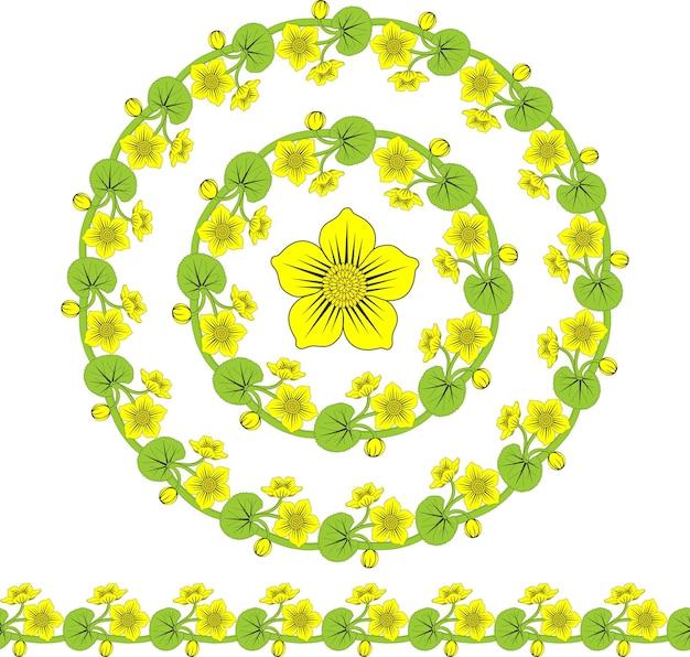 Vector de marco redondo con bonitas flores de caltha círculo floral festivo para su diseño de verano