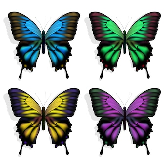 Vector mariposas azules, verdes, púrpuras y amarillas sobre blanco