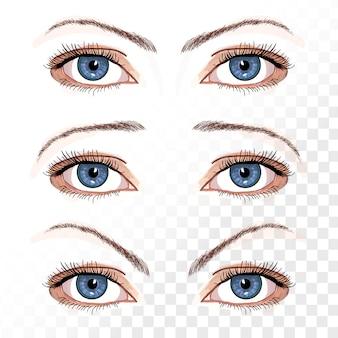 Vector de ojos femeninos aislados en mano blanca dibujado ilustración