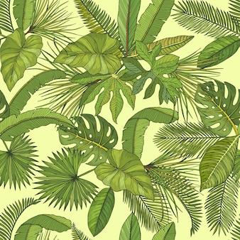 Vector de patrones sin fisuras con hojas tropicales. hoja verde de ilustración de palmera.