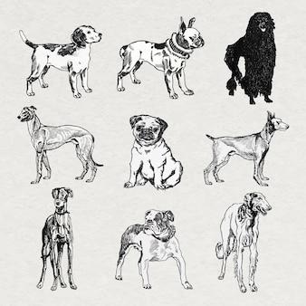 Vector de pegatinas de perro vintage en conjunto de ilustraciones en blanco y negro, remezclado de obras de arte de moriz jung