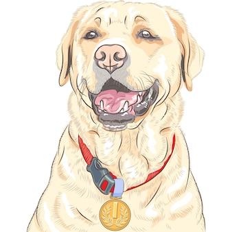 Vector perro raza labrador retriever campeón