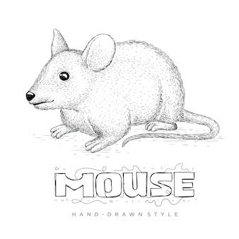 Vector de ratón en estilo dibujado a mano. ilustraciones de animales realistas