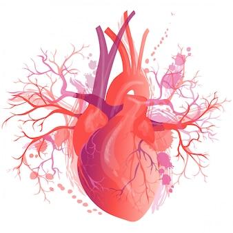 Vector realista corazón humano