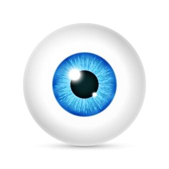 Vector realista globo ocular humano